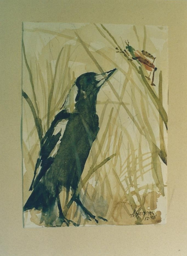 Currawong and grasshopper